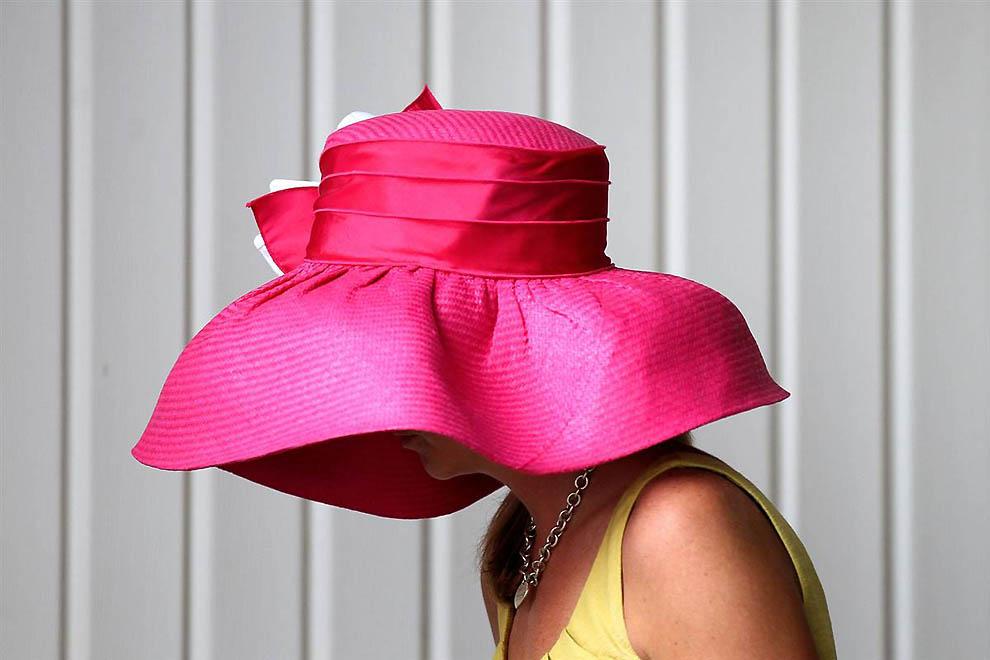 шляпы смешные картинки равномерно