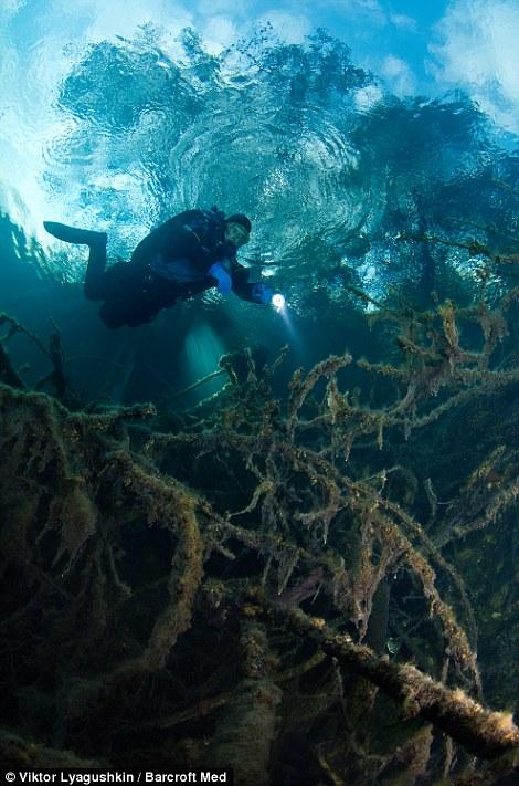 851 Голубое озеро   неизведанный подводный мир