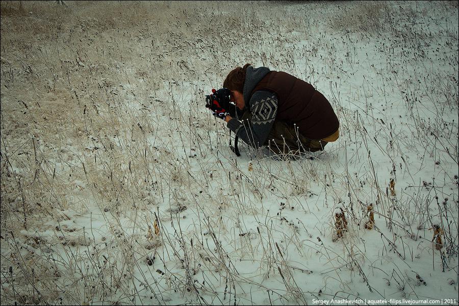965 Фотографии фотографов или как получаются фотоснимки