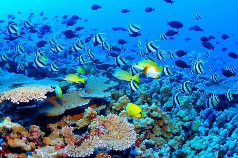980 10 мест неземной красоты, которые действительно существуют на Земле