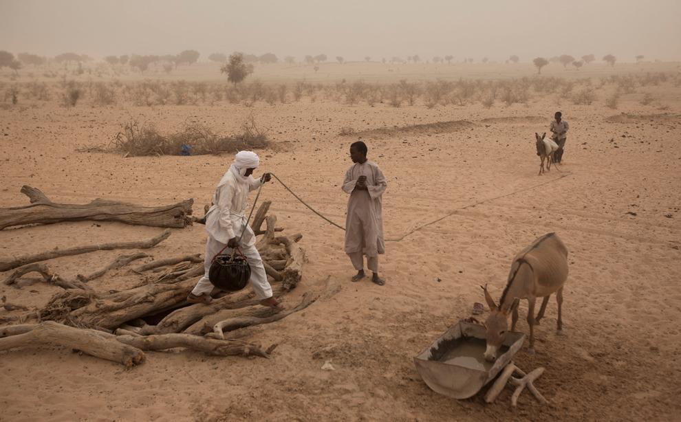 bp14 Продовольственный кризис в природной зоне Сахель в Африке