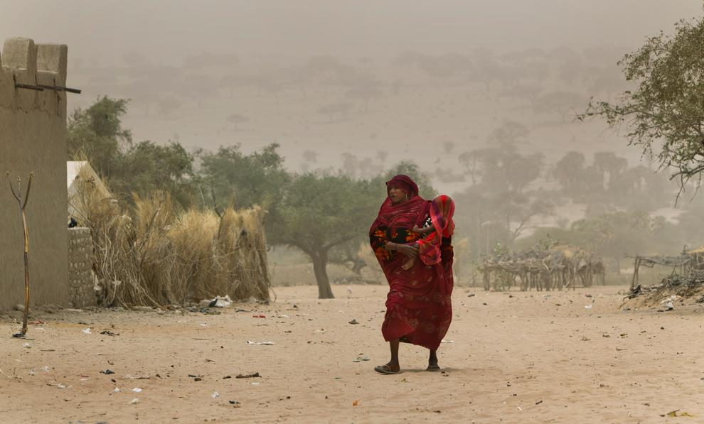 bp19 Продовольственный кризис в природной зоне Сахель в Африке