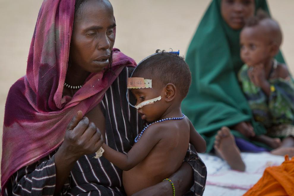 bp22 Продовольственный кризис в природной зоне Сахель в Африке