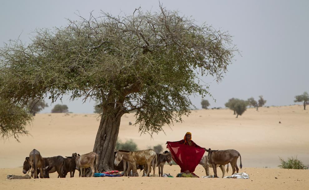 bp27 Продовольственный кризис в природной зоне Сахель в Африке