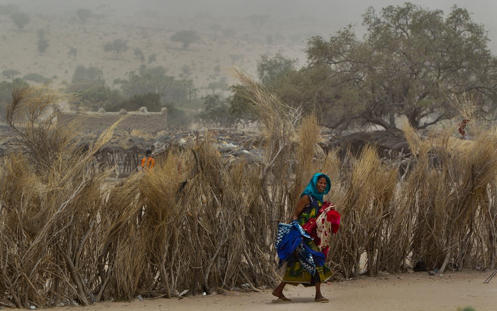 bp28 Продовольственный кризис в природной зоне Сахель в Африке