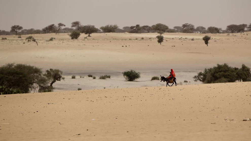 bp32 Продовольственный кризис в природной зоне Сахель в Африке