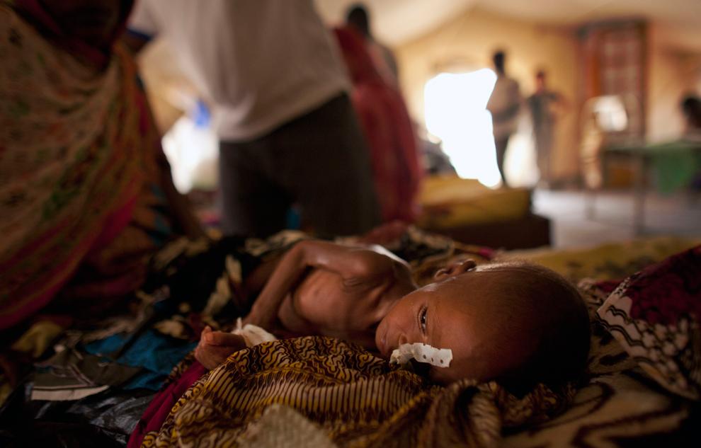 bp4 Продовольственный кризис в природной зоне Сахель в Африке
