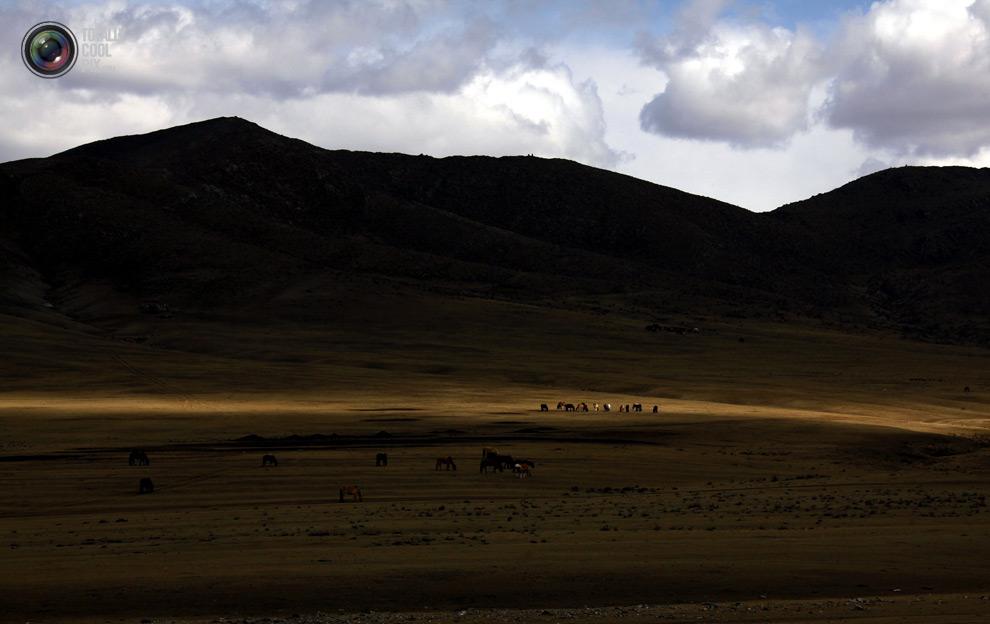 mongolia 001 Шахтеры ниндзя: Добыча золота в Монголии