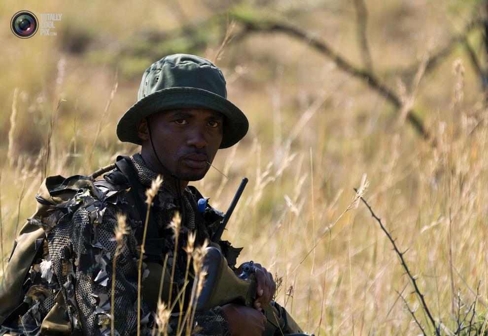 poaching 001 Браконьерство в Африке