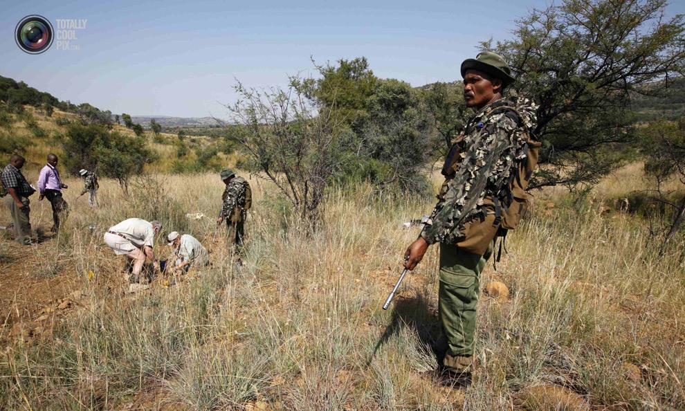 poaching 007 Браконьерство в Африке
