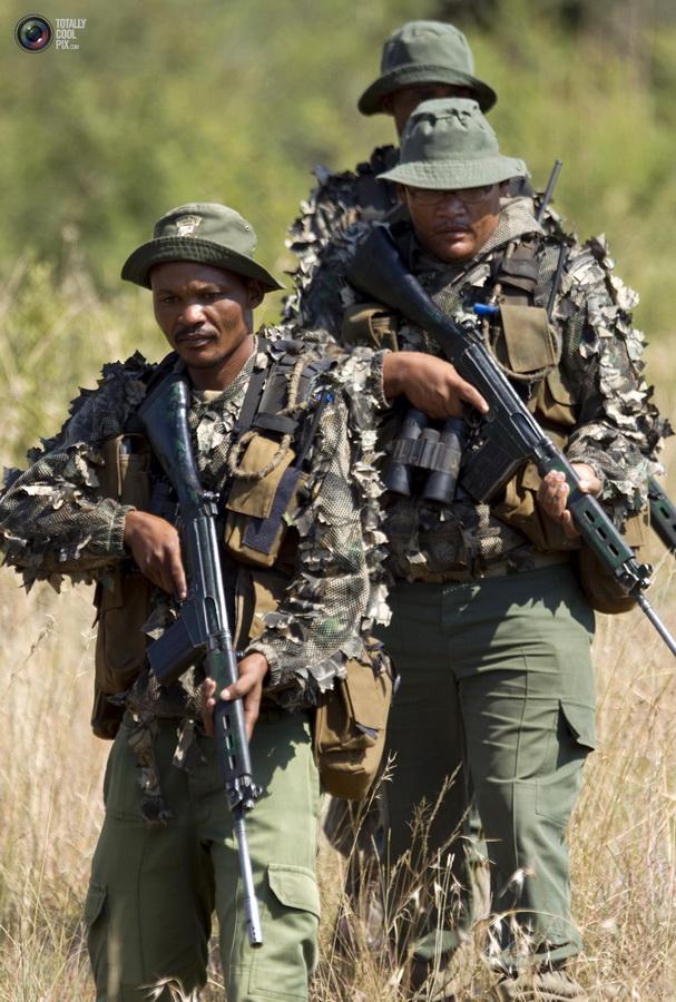 poaching 009 Браконьерство в Африке