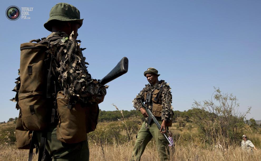 poaching 010 Браконьерство в Африке