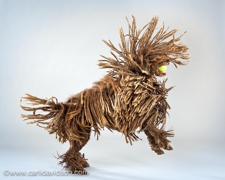 prigause Прыгающие собаки в новом проекте Карли Дэвидсон Аппорт!
