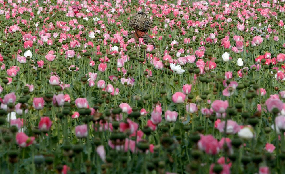 s a05 RTR319AC Афганистан: апрель 2012