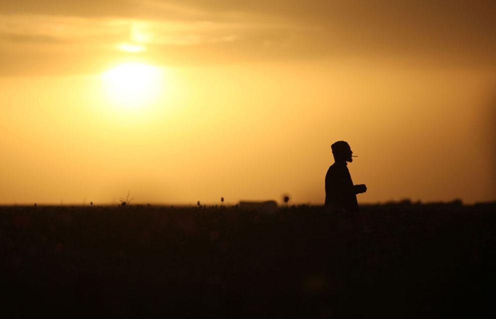 s a25 00568100 Афганистан: апрель 2012