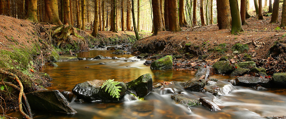 stars24 644x990 Удивительные фотографии природы от мастера пейзажного фото Джеймса Эпплтона