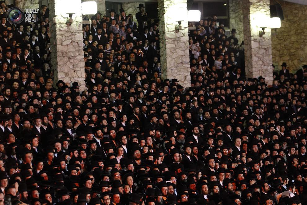 ultrajews 019 Евреи ортодоксы отмечают Лаг ба Омер