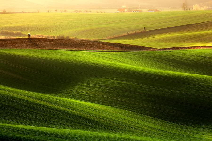 wave03 Зеленое цунами   холмистые поля Моравии