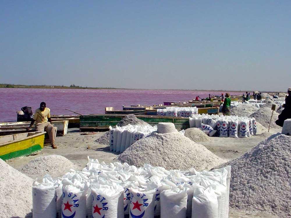 1 pink lac retba Розовое озеро в Сенегале