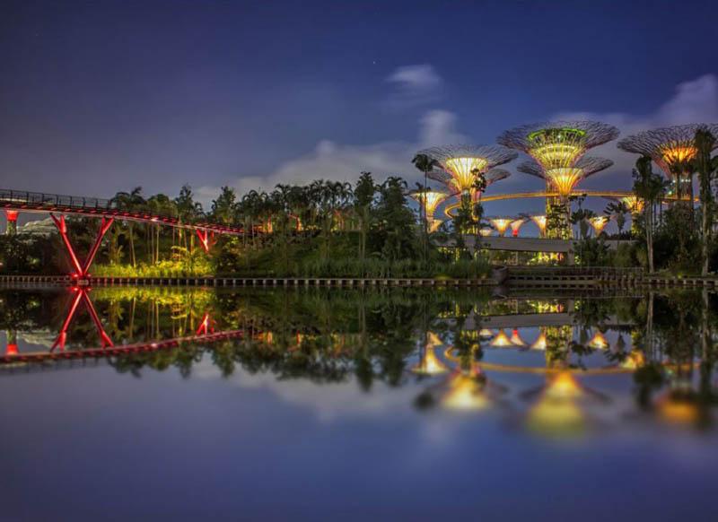 10110 Супер деревья Сингапура