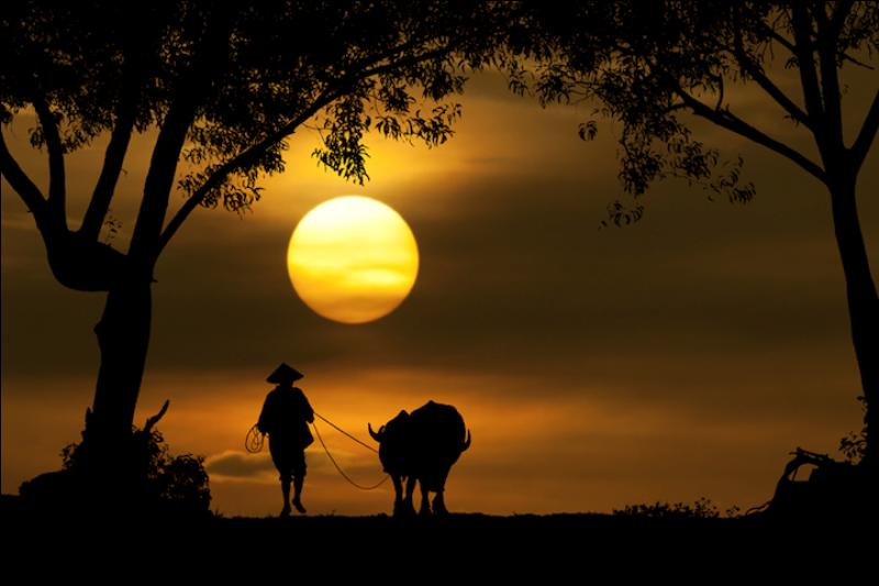108 Солнечные силуэты в фотографиях Ирвинга Лубиса