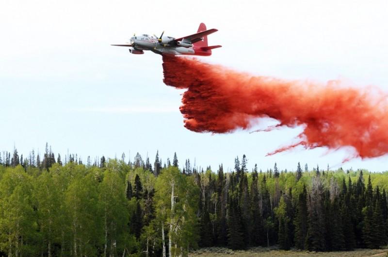 Лесные пожары на западе США