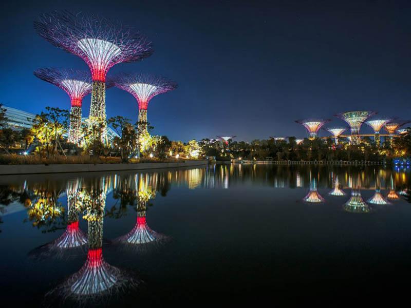 11140 Супер деревья Сингапура