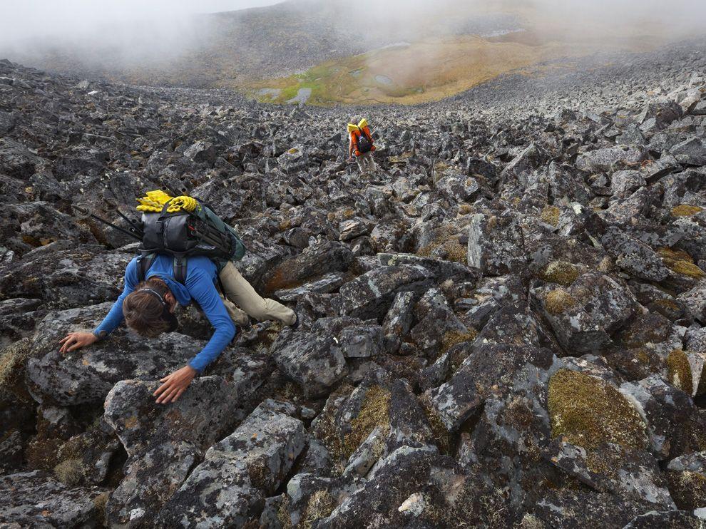 1216 Обои для рабочего стола от National Geographic за май 2012