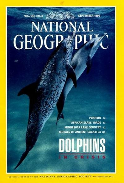 1252 20 лучших обложек журнала National Geographic