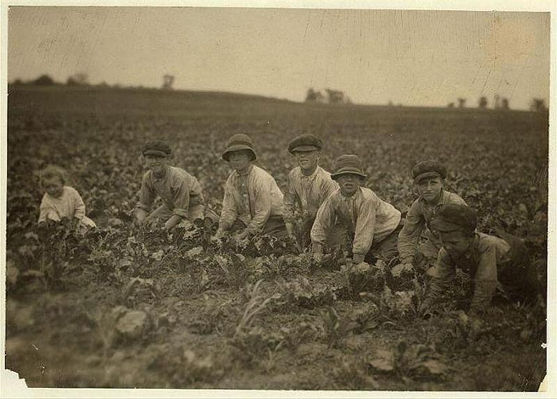 1264 Детский труд в истории