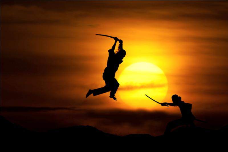128 Солнечные силуэты в фотографиях Ирвинга Лубиса