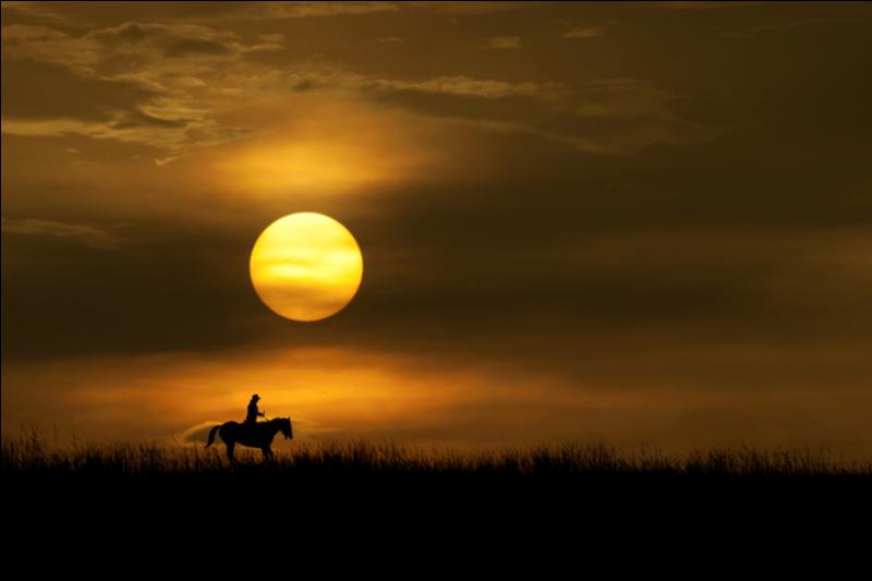129 Солнечные силуэты в фотографиях Ирвинга Лубиса