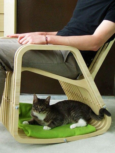 13103 Дизайн для котов