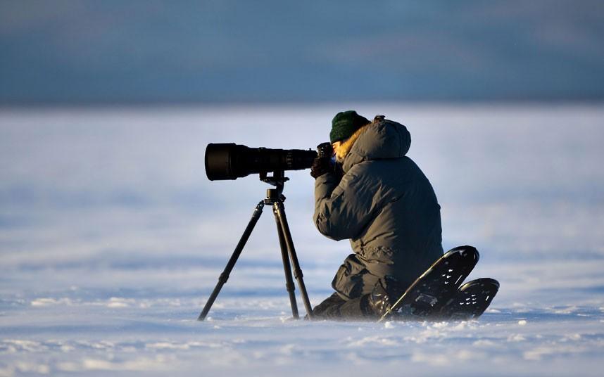 1373 Фотографии дикой природы Энди Роуса