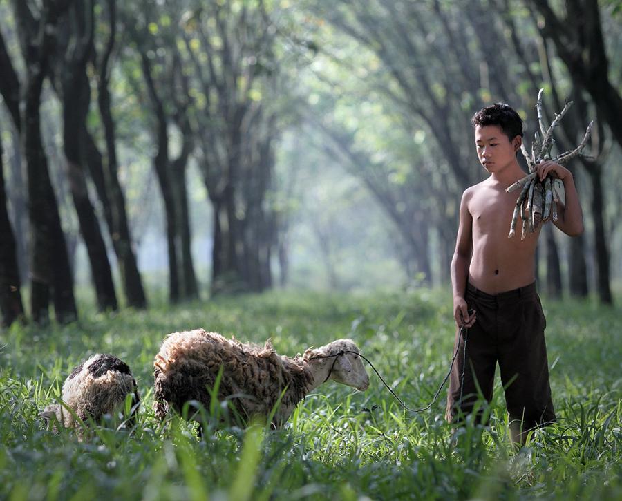 14109 Индонезийские истории фотографа Девана Иравана