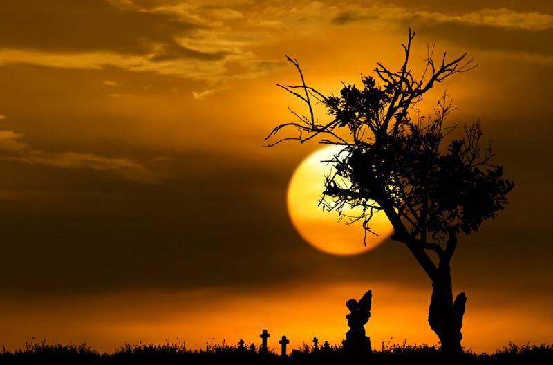 146 Солнечные силуэты в фотографиях Ирвинга Лубиса