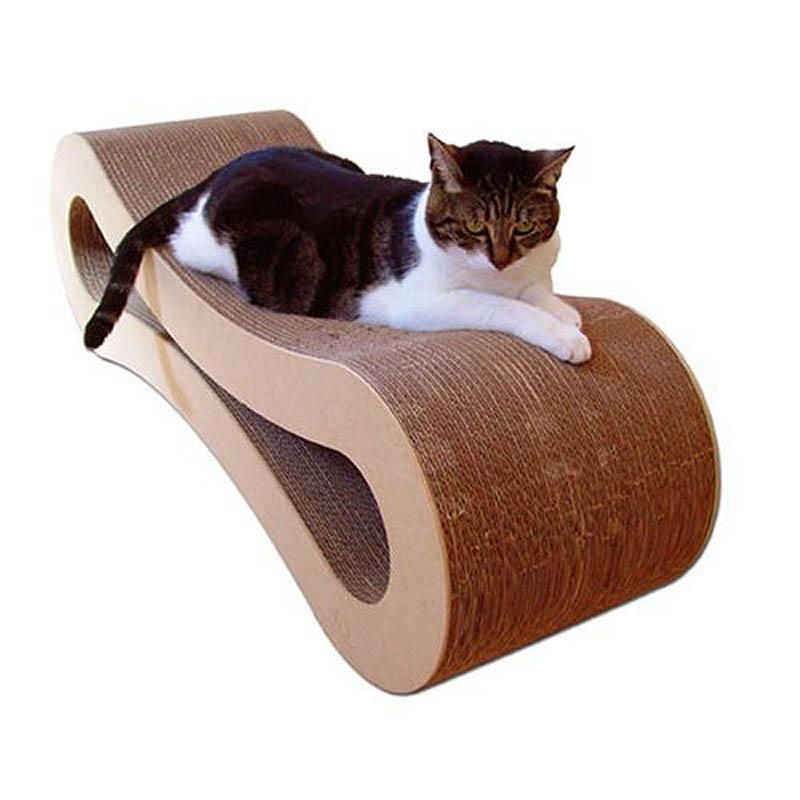 1487 Дизайн для котов