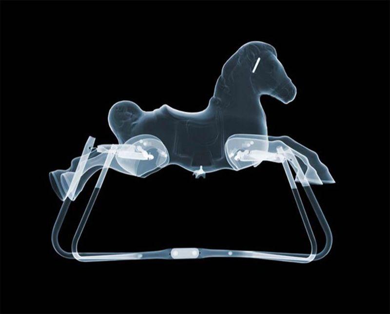 19Игрушечная лошадка Рентгеновский взгляд на мир Ника Визи