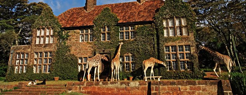 """206 Уникальный отель """"Поместье жирафа"""""""