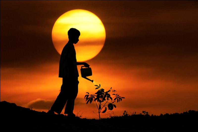 218 Солнечные силуэты в фотографиях Ирвинга Лубиса