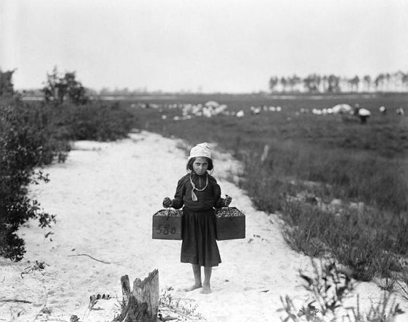 2242 Детский труд в истории