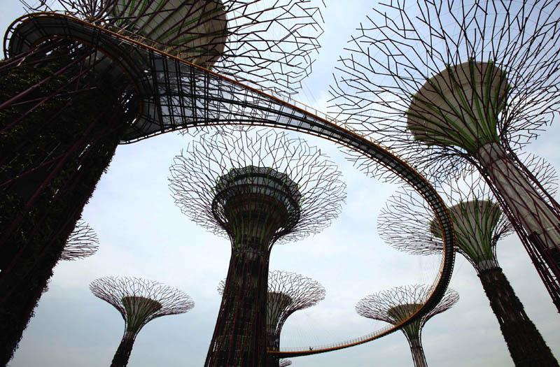 2285 Супер деревья Сингапура
