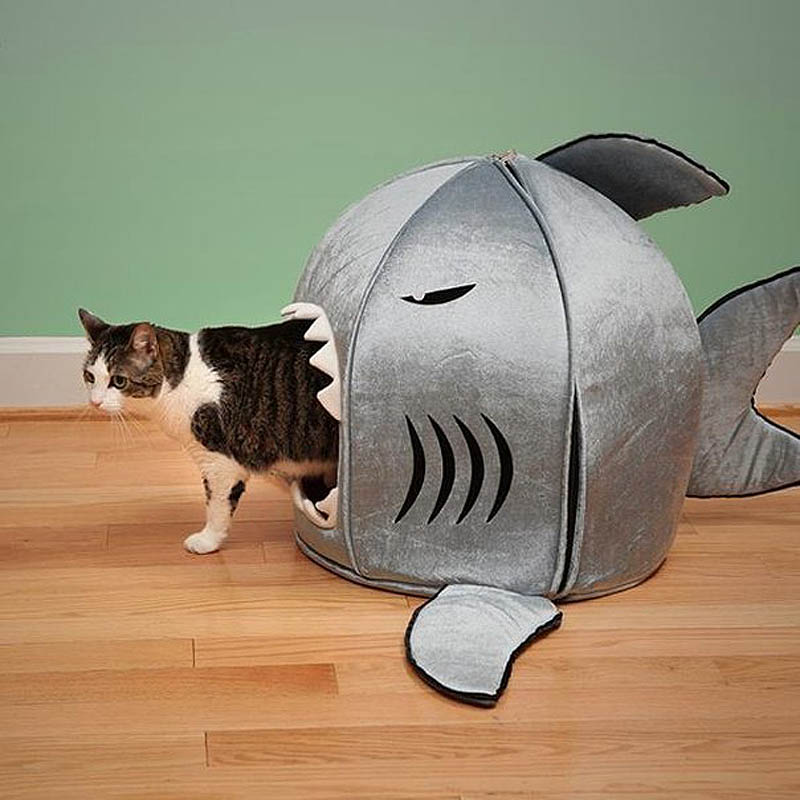 2293 Дизайн для котов