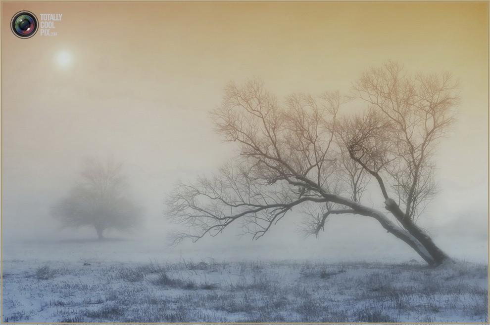 2427 Выразительные снимки венгерского фотографа Габора Дворника