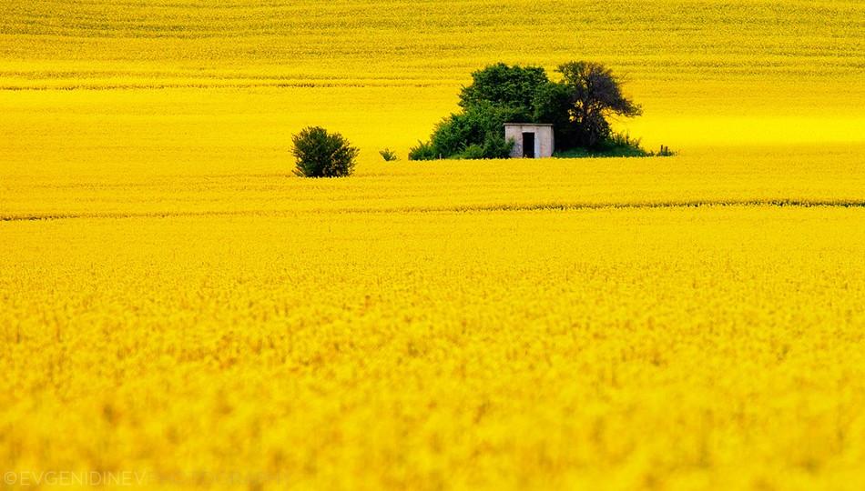 2536 Болгарские пейзажи фотографа Евгения Динева