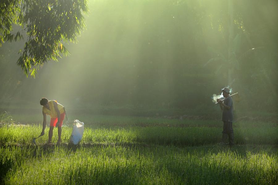 2566 Индонезийские истории фотографа Девана Иравана