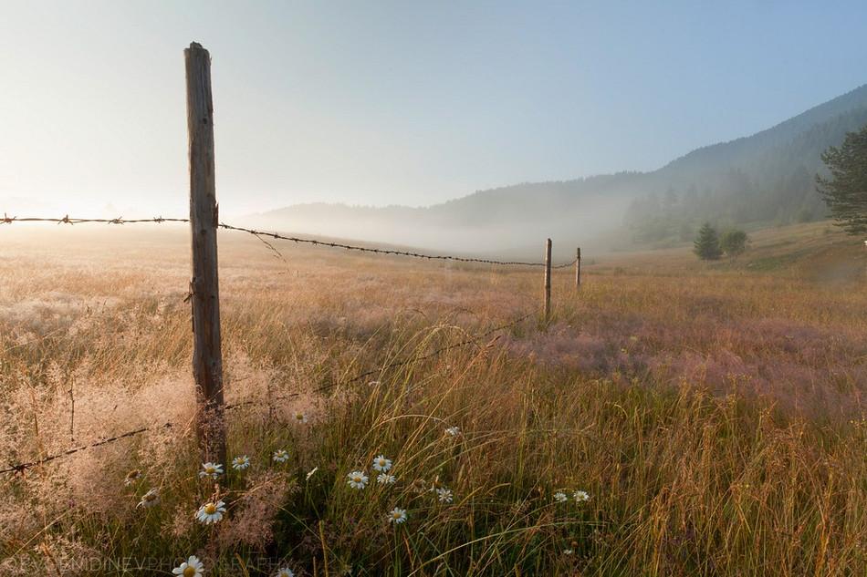 2729 Болгарские пейзажи фотографа Евгения Динева