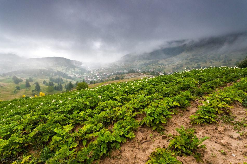 2824 Болгарские пейзажи фотографа Евгения Динева