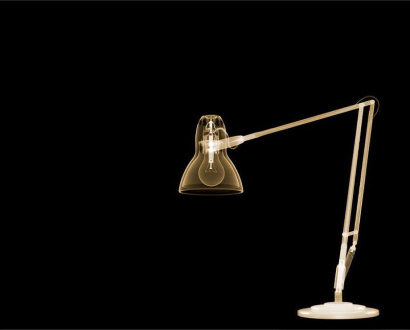 29Настольгая лампа Рентгеновский взгляд на мир Ника Визи
