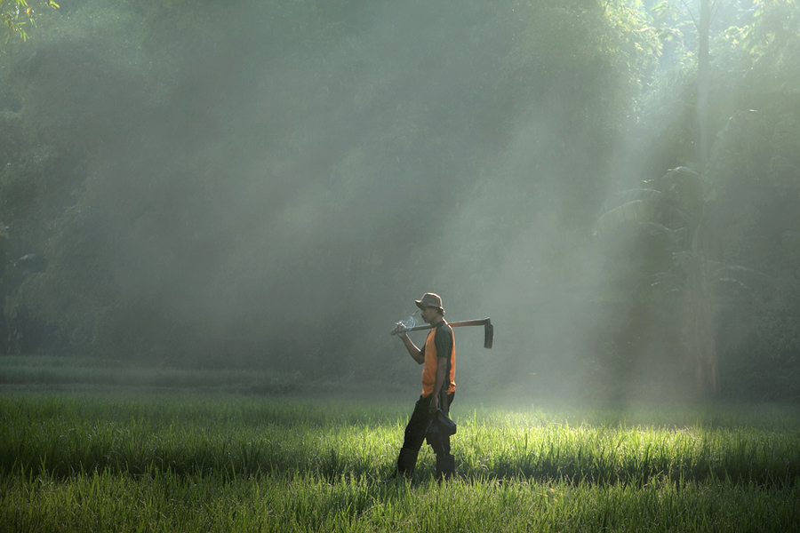 2945 Индонезийские истории фотографа Девана Иравана